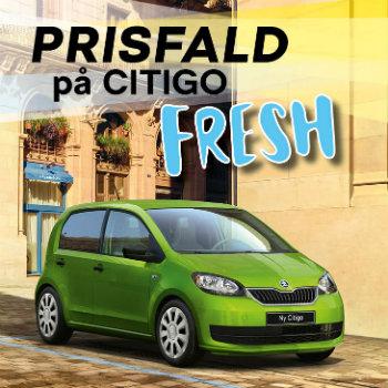 Fredericia Auto-service A/S